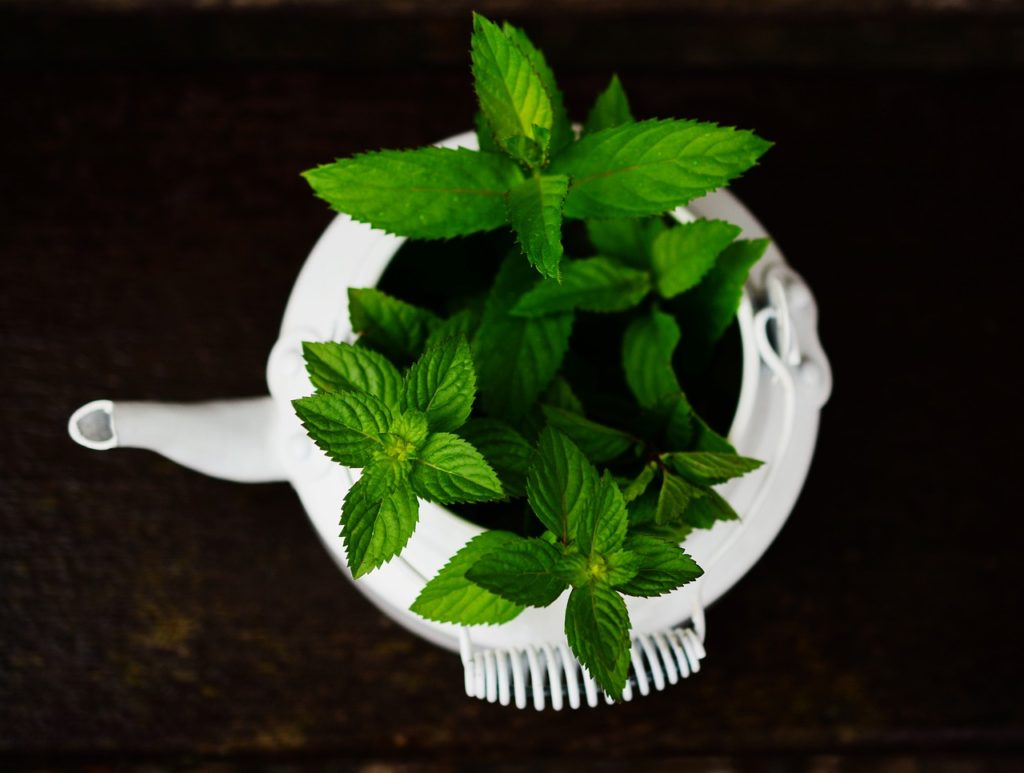 diy pedicure for rough feet peppermint