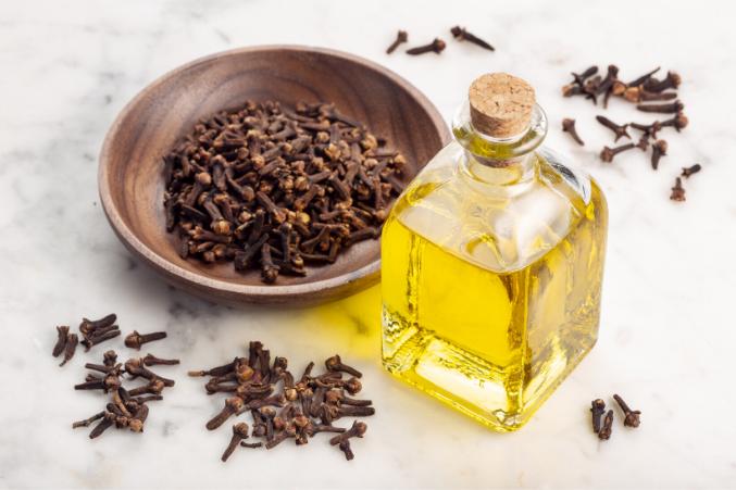 clove oil for toenail fungus